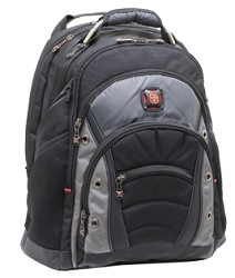 Wenger SwissGear Synergy Backpack for Notebooks up to 16
