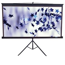 Click here for Elitescreens 84 4 3 TRIPOD screen with MAX prices