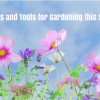 Tips and Tools for Gardening this Spring