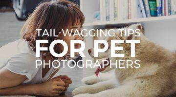 Tail-Wagging Tips for Pet Photographers