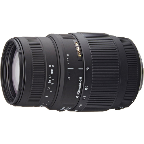 Sigma 70-300mm f/4-5.6 DG Macro Telephoto Zoom Lens for Canon SLR Cameras