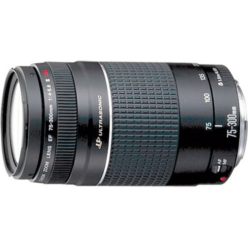 Canon EF 75-300mm F/4-5.6 USM III Lens, With Canon 1-Year USA Warranty