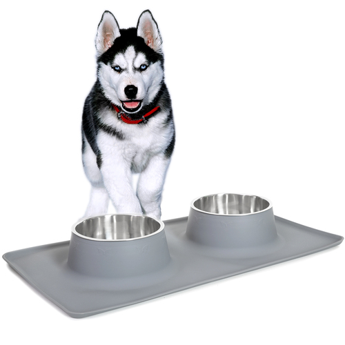 Deco Pet Dual Stainless Steel Food/Water Bowls for Pets