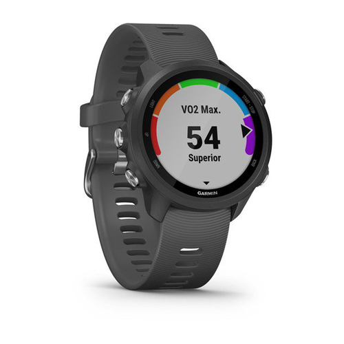 Garmin Forerunner 245 GPS Sport Watch with Wrist-Based Heart Rate Monitor - Slate